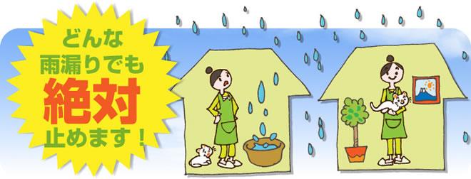 どんな雨漏りでも絶対止めます!